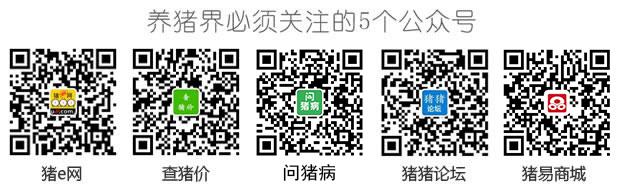 十博体育官网最新网站 2