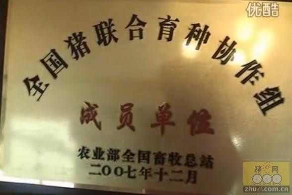 北京顺新龙荣誉