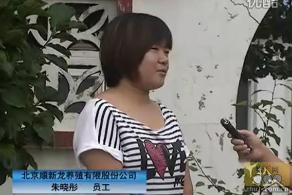 员工谈北京顺新龙的展望