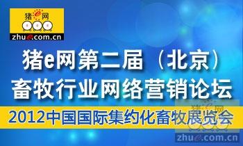 猪e网第二届(北京)畜牧行业网络营销论坛专题