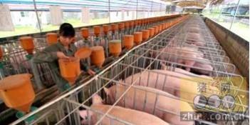 [周]2013年养殖行业预计盈利回升