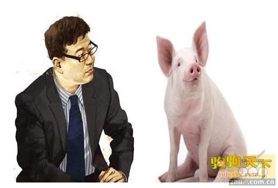 """网易CEO丁磊:""""丁氏猪肉""""不会卖""""天价"""""""