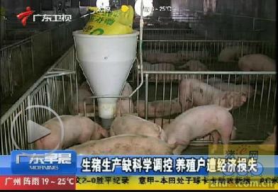 生猪生产缺科学调控 养殖户遭经济损失