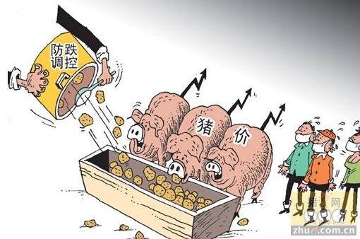 [周]生猪生产年内或不再直接调控