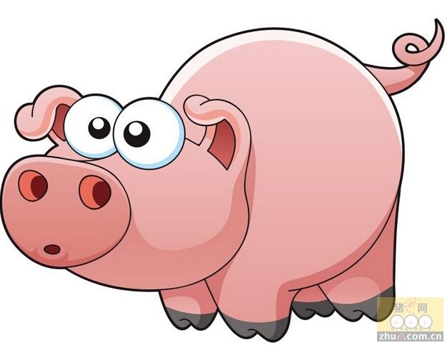 [周]生猪价格平稳上涨 下半年猪价走势展望分析