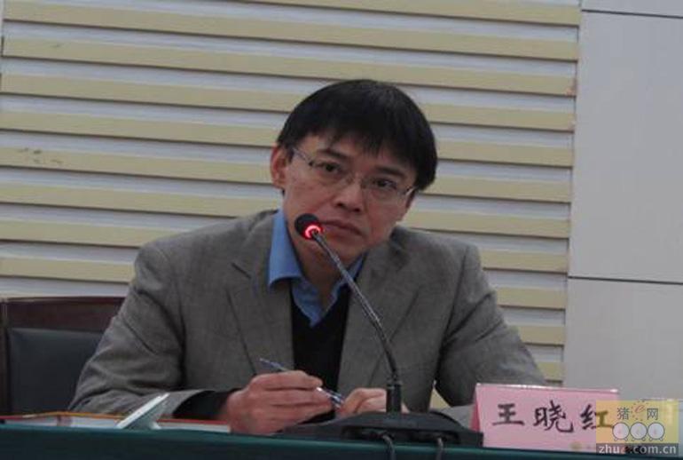[周]王晓红:深入剖析饲料行业十大现象