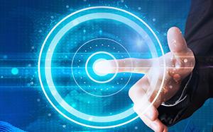 吃的胖胖的可爱的宠物猪图片