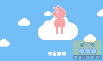 安佑云――为养猪业插上云端的翅膀