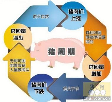 """图解:""""猪周期""""降临,物价还""""淡定""""吗?"""