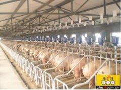 天津市肉类总产量今年将达44.35万吨