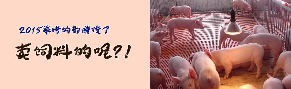 2015养猪的都赚钱了,卖饲料的呢