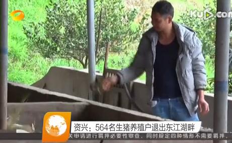 湖南资兴:564名生猪养殖户退出东江湖畔