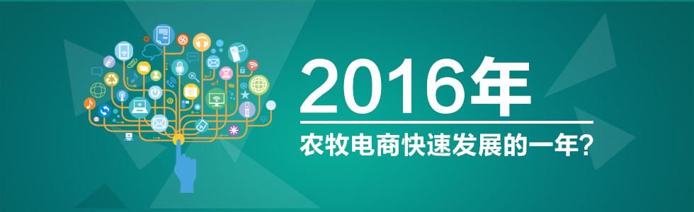2016年是农牧电商快速发展的一年?