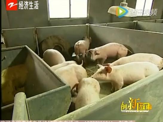 养殖,猪病,腹泻,拉稀