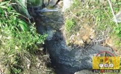 福建三明一公司猪场废水偷排山溪被罚10万元