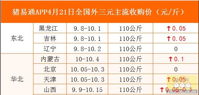猪易通APP4月21日各地外三元价格表