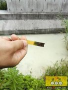 杭州一种猪场废水渗漏 手一碰瞬间变成黄