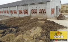 猪场的废料怎么处理才不会再次污染