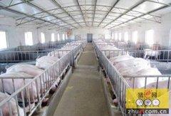 四川建设新一轮现代农林畜牧业重点县 打