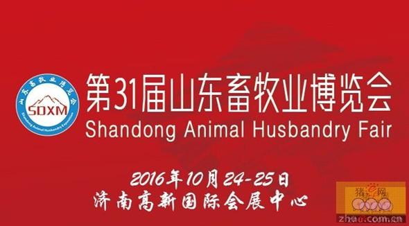 2016山东畜牧业博览会大有看头