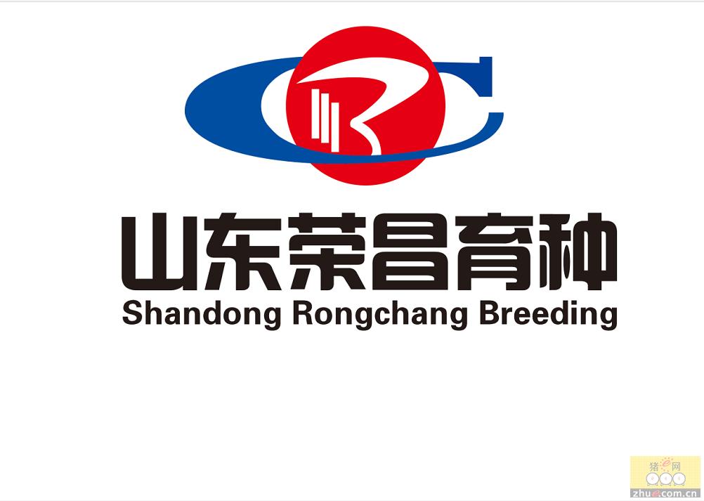 山东荣昌育种股份有限公司上榜华东优秀种猪企业