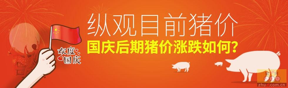 纵观目前猪价,国庆后期猪价涨跌如何?