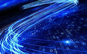 董广林��猪发瘟,人发疯;谁在发病?
