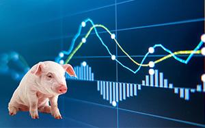 卓创资讯:猪价大跌,猪价破10