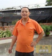 养猪从来没亏过的广东邓幼平