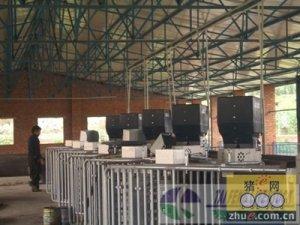 泸州第三家velos智能化母猪群养管理系统落户