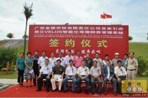 广西金德-成都泰丰就Velos系统合作签约