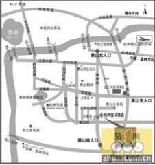 2010中国维生素产业发展高层论坛