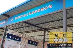 重庆南方金山谷农牧参加河北省种猪拍卖会