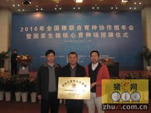 2010年全国猪联合育种协作组年会举行
