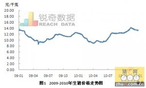 2010年度生猪价格回顾分析与2011年行情预测