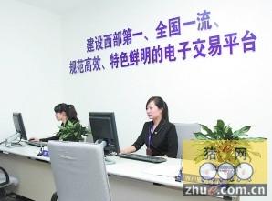 四川生猪电子商务平台 首日成交总额545万元