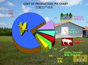 视频: 如何建立规摸化养猪生猪体系