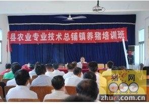 安徽凤阳县总铺镇举办新型农民养猪技术培训班