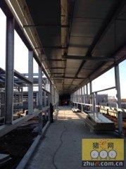 建设中的连云港北欧农庄商品猪场(二)