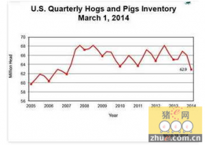 美国猪的灭顶之灾:一年毁掉美国10%生猪的可怕疾病