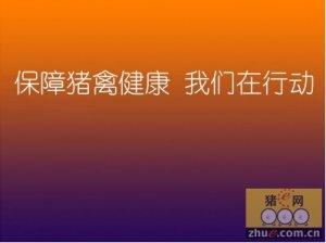 """第五届中国兽药大会""""杭州银丰""""杯 安全用药知识科普活动"""