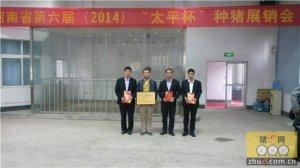 """""""太平杯""""河南省第六届种猪展销会太平牧业再创佳绩荣获第二名"""