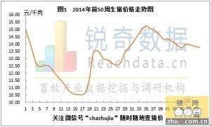 锐奇数据14年50周猪评:消费严重低迷猪价下调