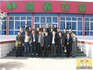 北京顺鑫农业茶棚原种猪场