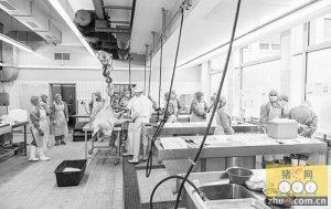 全球首个猪生物样本库为科学家建立疾病动物模型