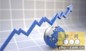 辽宁生猪市场结束16个月低迷迎来反弹