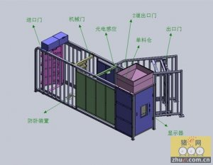 中国养猪的未来――智能化精确饲喂系统