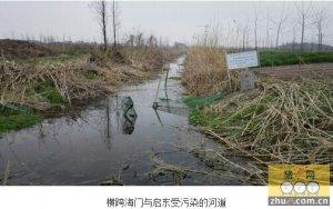 南通养猪场跨界排污难治 市长狠批部门作风限一周解决
