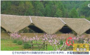 杭州现中国最美猪圈:后花园游泳池一应俱全