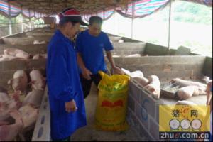 百宜云商:饲料客对中国饲料电商发展的价值很大